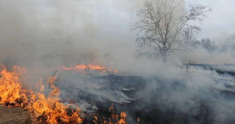 пожары в ХМАО