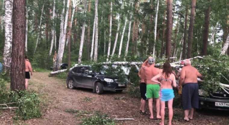 На Челябинскую область обрушился ураган. Есть пострадавшие