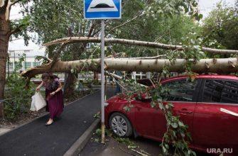 Свредловская область МЧС предупреждает буря