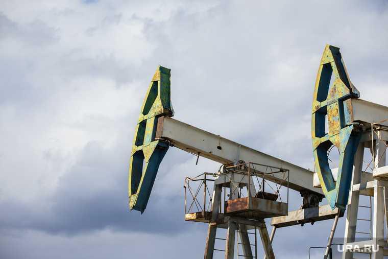 зеленая энергетика США Европа выборы Джо Байден победа