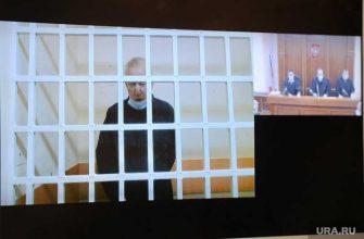 Челябинский областной суд Тефтелев апелляция
