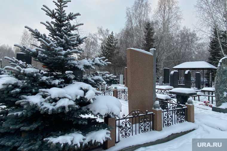 кладбище для животных