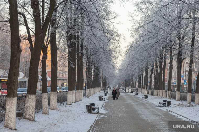 новости перми и пермского края