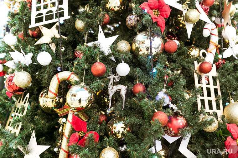 губернаторская елка тюмень