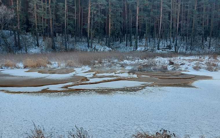 поселок белоярский мэр Андрей Горбов