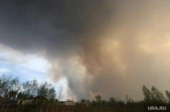 майские пожары Курганская область