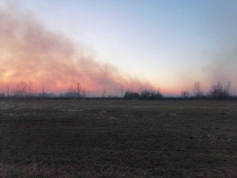В Тюменской области горит Песьяновский природный заказник. Видео, фото