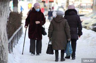 ВШЭ пенсии пенсионеры