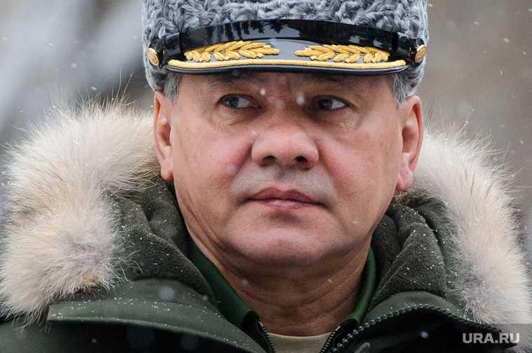 Шойгу и Фальков договорились вместе выполнить поручение Путина