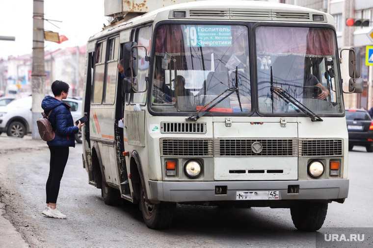 Курганские автобусы