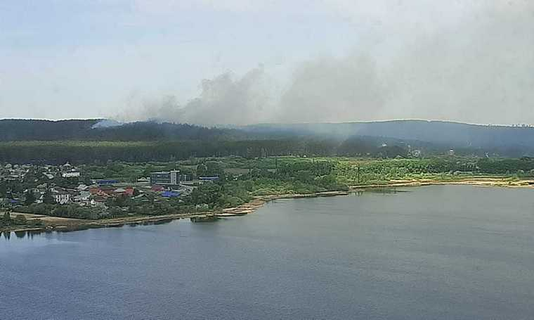 В Екатеринбурге горит два гектара леса. Фото