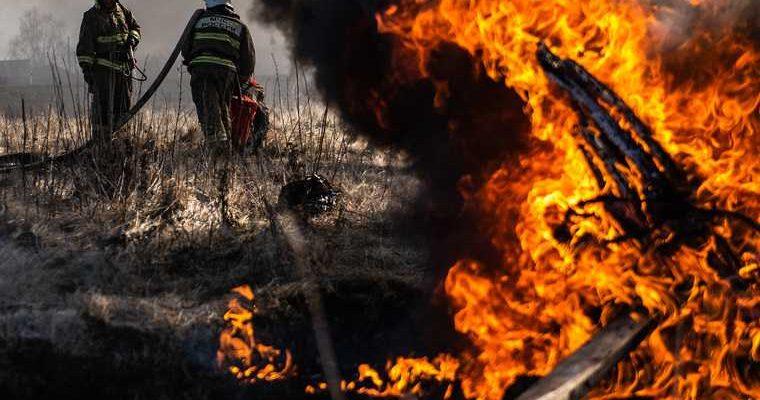 почему горят леса в Тюменской области