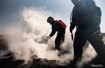 Челябинск пожары тополиный пух обращение возгорание пожары