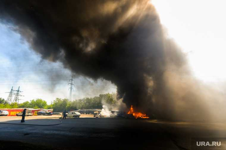 В Екатеринбурге из-за тополиного пуха горит ЦПКиО