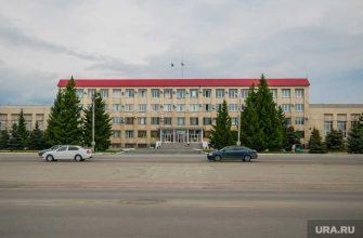 выборы главы Шадринска